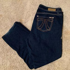 Melissa McCarthy Seven7 Jeans